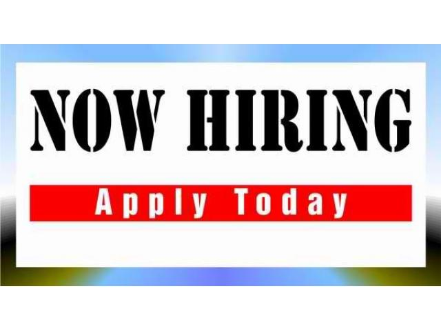 Looking for Office Staff